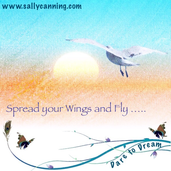 spread your wings and fly quote sally canning