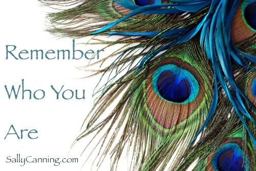 peacock feather poster with quote remember who you are sally canning